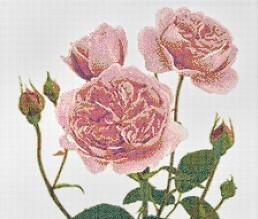 Malmaison Cipria floral mosaic by Carlo Dal Bianco
