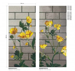 Floral Mosaic Pattern Ranunculus