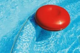 GALAPAGOS Blend Swimming Pool Mosaic